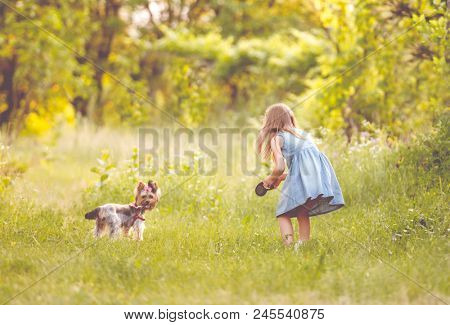 Little girl running with the dog in the countryside