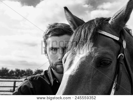 Good Looking, Hunky Cowboy Standing Behind His Stallion,  Horse With Boots, Black Shirt And Hat