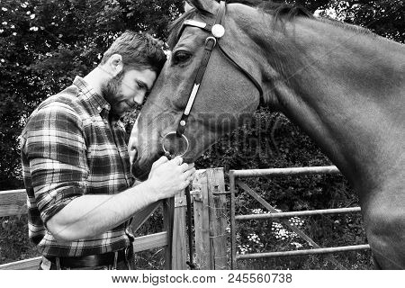 Good Looking, Hunky Cowboy Stands Next To Ranch Gate Petting And Loving His Horse