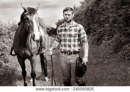 Good Looking, Hunky Cowboy With Boots, Chequered Shirt And Hat Walks Next To His Stallion, Horse