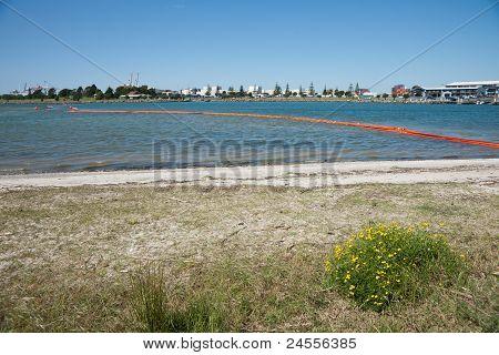 Tauranga HArbour with orange oil boom to prevent contamination on beach.
