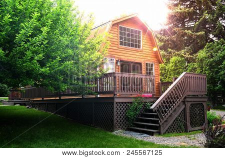 Cedar plank sided barn-style cabin and apple tree bathed in sunlight