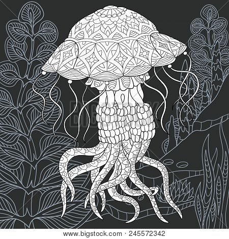 Jellyfish Drawn In Line Art Style. Ocean Background In Black And White Colors On Chalkboard. Colorin