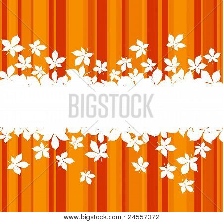 Colorful Autumnal Leaves Background