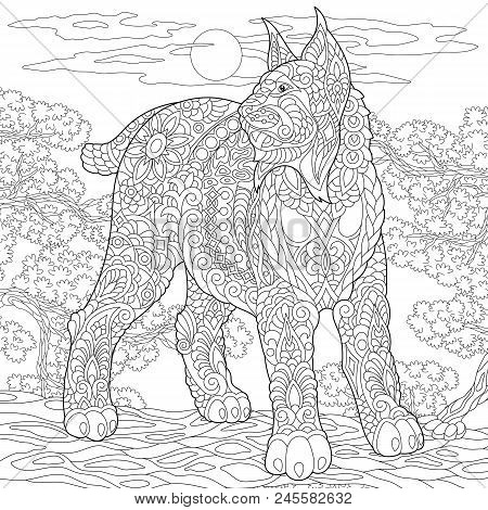 Wildcat. Coloring Page. Colouring Picture. Adult Coloring Book Idea. Freehand Sketch Drawing. Vector