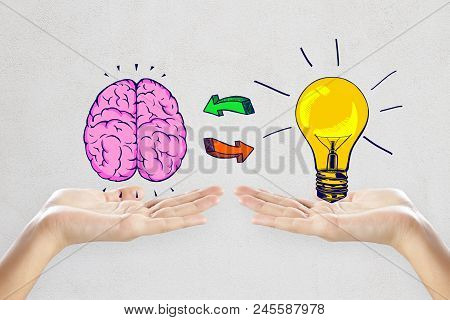 Female Hands Holding Creative Brain And Lamp Sketch On Concrete Wall Background. Idea, Innovation, B