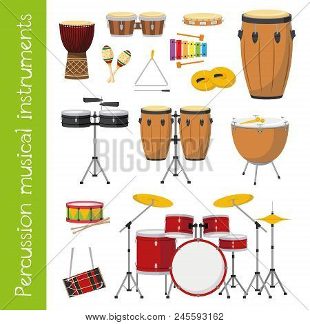 Vector Illustration Set Of Percussion Musical Instruments In Cartoon Style Isolated On White Backgro