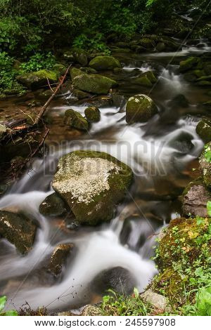 A Creek Flowing Over Mossy Rocks In A Forest.  Cosby, Great Smoky Mountains National Park, Usa.