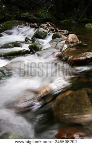 A Creek Flowing Over A Stone Dam In A Forest.  Cosby, Great Smoky Mountains National Park, Usa.