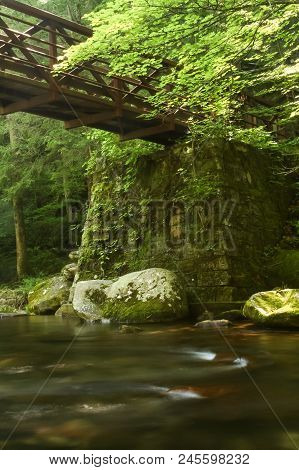 A Footbridge Over A River In A Forest.  Great Smoky Mountains National Park, Usa.