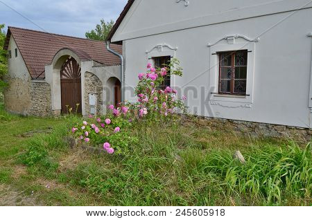 Garden Before The Old House . South Bohemia, Czech Republic