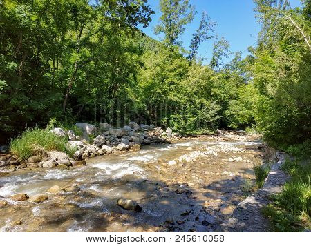 Mountain River In National Park Near Almaty City