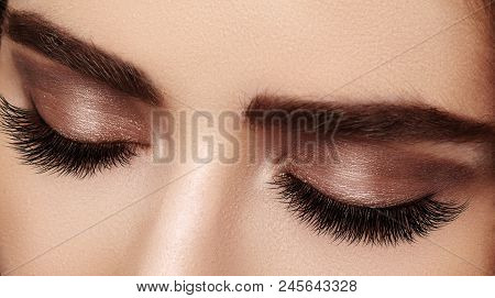 poster of Beautiful macro shot of female eye with extreme long eyelashes and black liner makeup. Perfect shape make-up and long lashes. Cosmetics and make-up. Closeup macro shot of fashion eyes visage