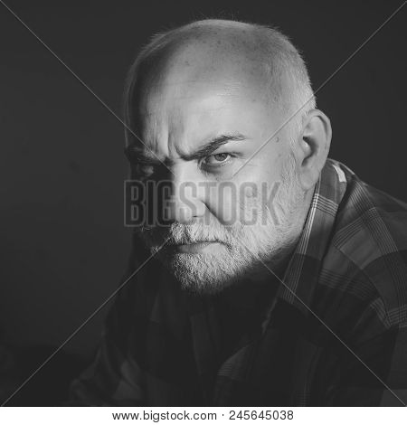 Older Man With A Serious Look. Man With Grey Beard, Frown Brows On Serious Face With Bold Forehead H