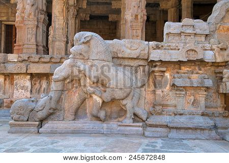 Balustrade showing a ferocious lion pouncing on elephant with a curled up trunk, North-west mandapa, Airavatesvara Temple, Darasuram, Tamil Nadu, India. poster