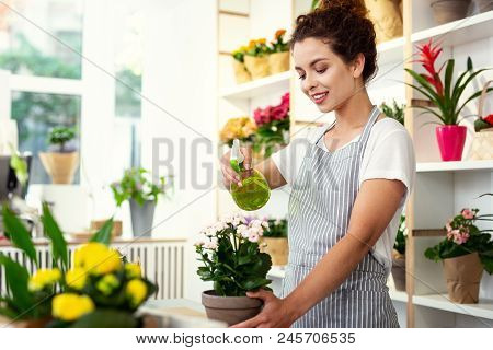 In The Flower Store. Cheerful Delighted Woman Spraying Flowers While Working In The Flower Store