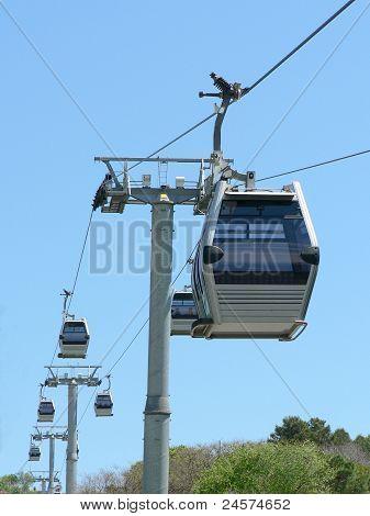 Tram Cars