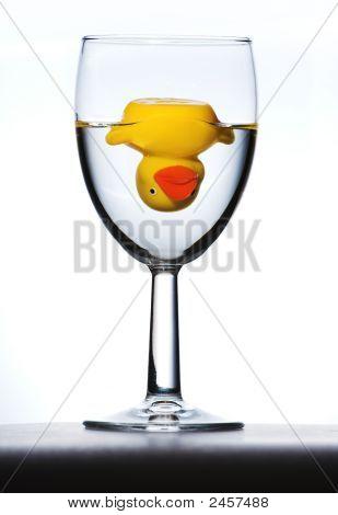 Duck In Glass