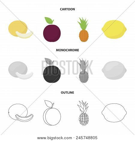 Melon, Plum, Pineapple, Lemon.fruits Set Collection Icons In Cartoon, Outline, Monochrome Style Vect