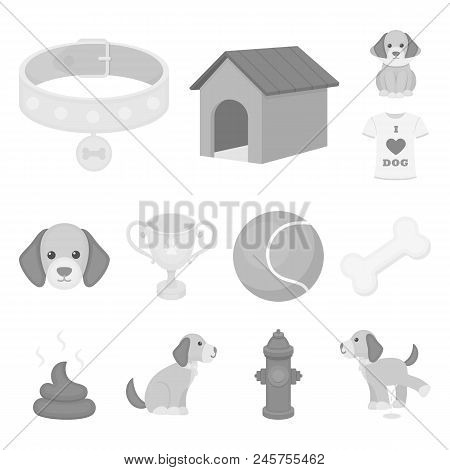 Pet Dog Monochrome Icons In Set Collection For Design. Caring For The Puppy Vector Symbol Stock  Ill