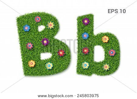Bb - Lowercase And Capital Letters Of The Alphabet With Grass Texture. A Collection Of Symbols. Moor