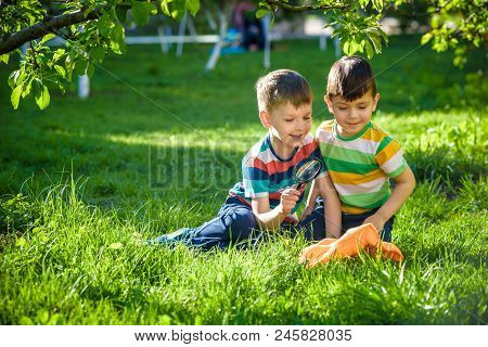 Adorable Kid Boy Making Fire On Paper With A Magnifying Glass Outdoors, On Sunny Day.