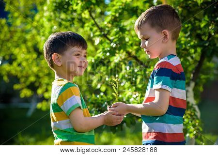 People Holding Young Plant In Hands Against Green Spring Background. Earth Day Ecology Holiday Conce