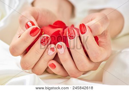 Female Manicured Hands With Rose Petals. Young Woman Hands Holding Pile Of Red Rose Petals. Lady In