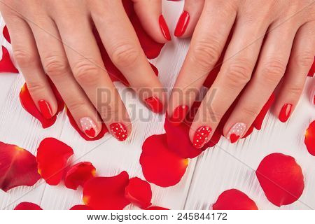 Female Manicured Hands And Rose Petals. Woman Finger With Red Designed Nails On Rose Petals. Perfect