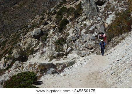 A Porter In Dingboche, Everest Base Camp Trek, Nepal
