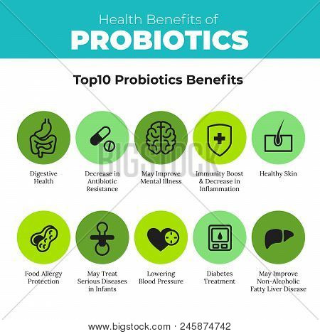 Probiotics Health Benefits Vector Infographic. Flat Stroke Illustration About Nutrient Rich Food And