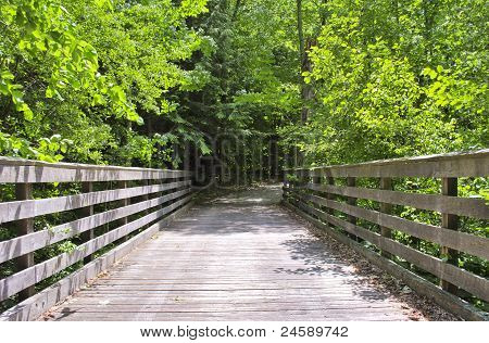 Wood bridge leading into woods