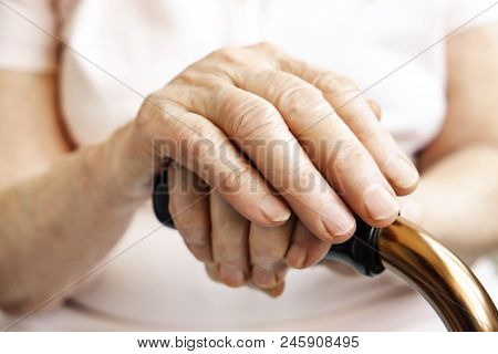 Elderly Woman In Nursing Home, Wrinkled Hand With Clearly Visible Veins Holding Walking Quad Cane. O