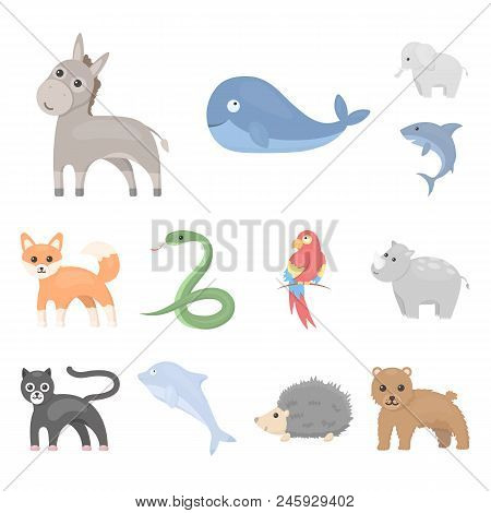 An Unrealistic Animal Cartoon Icons In Set Collection For Design. Toy Animals Vector Symbol Stock Il