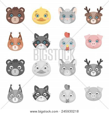 Protein, Raccoon, Chicken, Pig. Animal Muzzle Set Collection Icons In Cartoon, Monochrome Style Vect