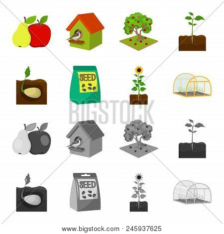 Company, Ecology, And Other  Icon In Cartoon, Monochrome Style. Husks, Fines, Garden Icons In Set Co