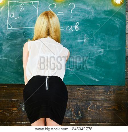 Lady Sexy Teacher In Short Skirt With Zip On Back Explaining Formula. Sexy Teacher Concept. Teacher