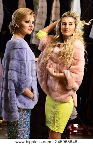 Women In Violet And Pink Fur Coats. Winter Clothing Concept. Ladies With Blond Hair In Furry Clothes