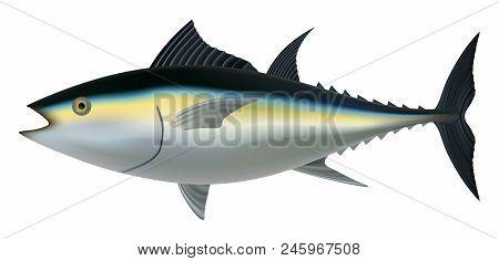 Tuna Fish Mockup. Realistic Illustration Of Tuna Fish Vector Mockup For Web Design Isolated On White