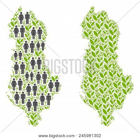 People Population And Flora Albania Map. Vector Pattern Of Albania Map Constructed Of Scattered Crow