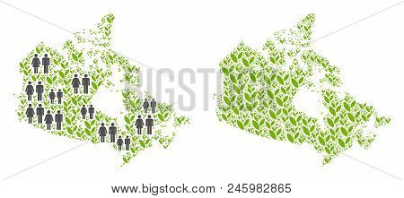 People Population And Green Plants Canada Map. Vector Pattern Of Canada Map Combined Of Scattered Pe