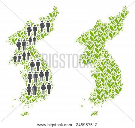 People Population And Grass North And South Korea Map. Vector Pattern Of North And South Korea Map D