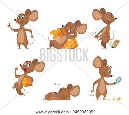 Various Characters Of Mice In Action Poses. Mouse Animal, Rat Rodent Cheerful With Cheese, Vector Il