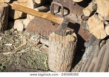 Llumberjack Chopped The Tree Trunks For Firewood With An Axe. The Texture Of Cut Wood. Hiking Fuel F