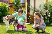 mentally disabled woman with a second woman and a companion dog, concept learning by animal assisted living poster