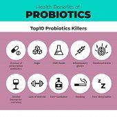 Probiotics health benefits vector infographic. Flat stroke illustration about nutrient rich food and how probiotics influences human body. Top 10 probiotics killer. poster