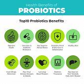 Probiotics health benefits vector infographic. Flat stroke illustration about nutrient rich food and how probiotics influences human body. Top 10 probiotics benefit. poster
