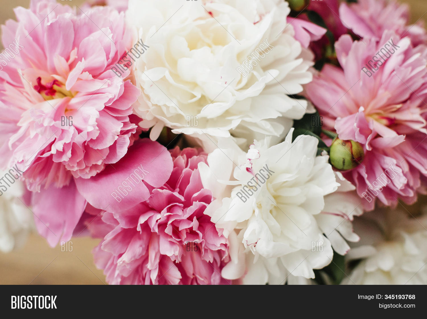 Happy Mothers Day Image Photo Free Trial Bigstock