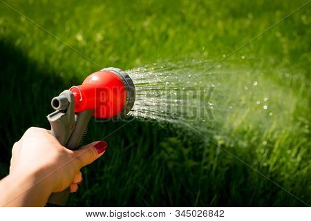 Hand Water Garden Seal Hose Care Green.woman Hands Watering Plants From The Hose, Makes A Rain In Th