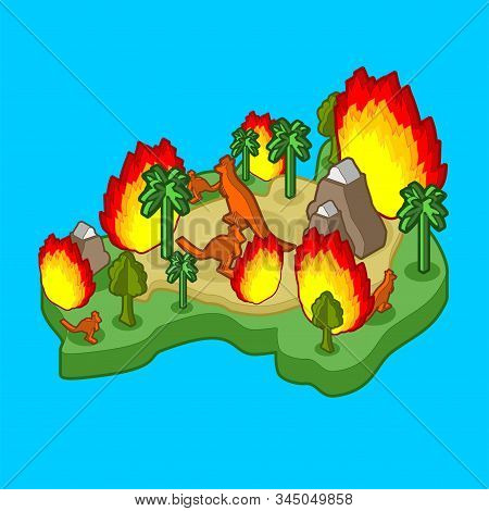 Fire In Australia. Mainland Is Engulfed In Fire. Animals And Plants Are Burning. Vector Illustration